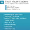 Smart Mouse Academy - Учебный центр IT образования